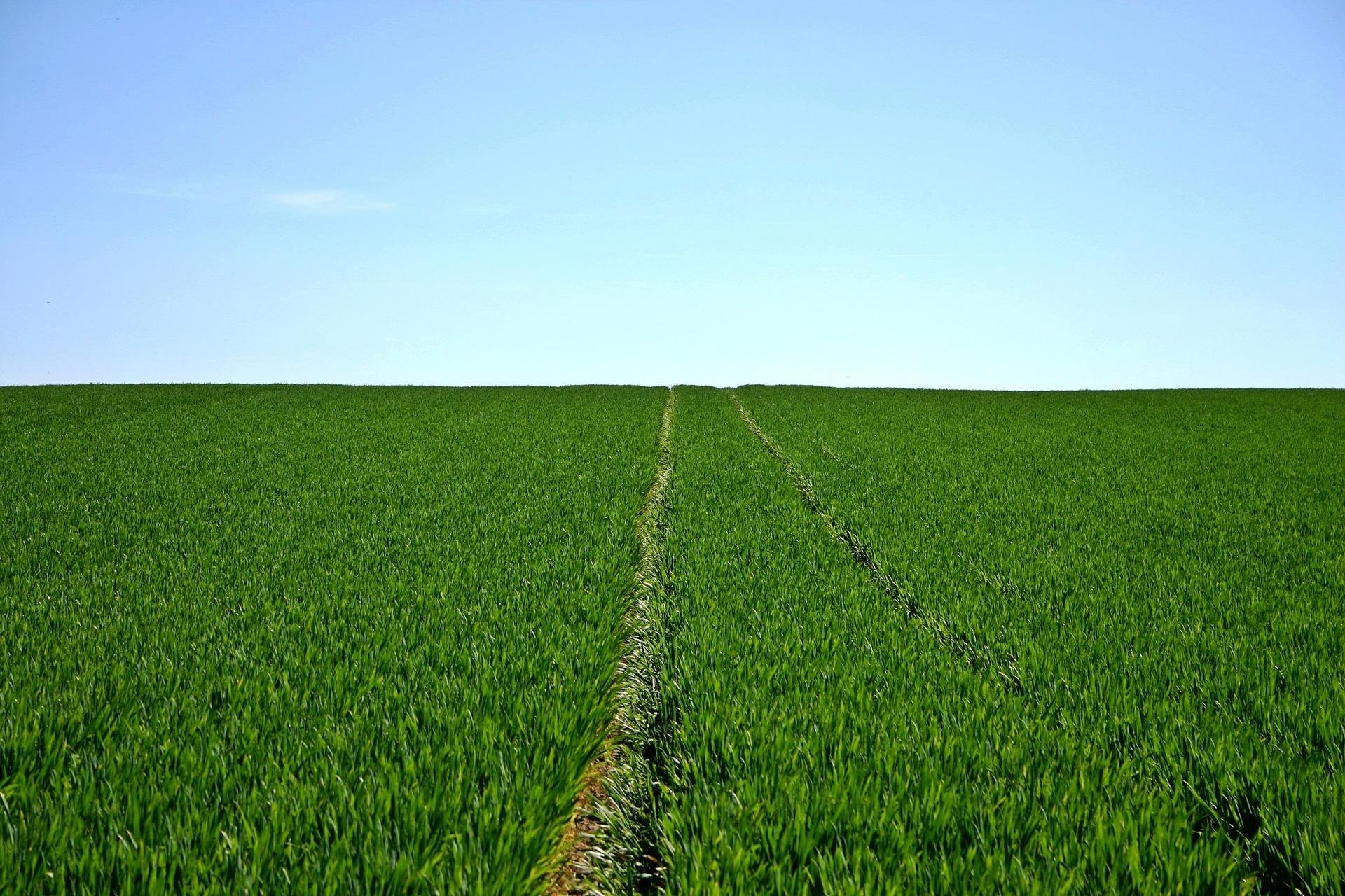 Energia para agricultura